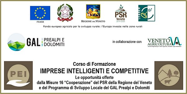 IMPRESE INTELLIGENTI E COMPETITIVE